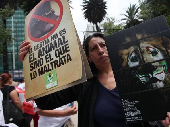 Animalisti messicani protestano davanti all'ambasciata Usa a città del Messico (Epa)