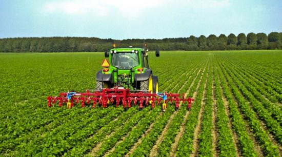 ripresina agricolutura sicilia