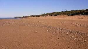 La spiaggia di Rimigliano. Sullo sfondo la duna