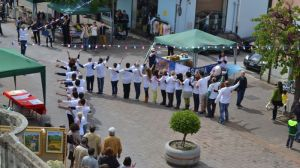 CARCIOFO_VENTURINA_FESTA