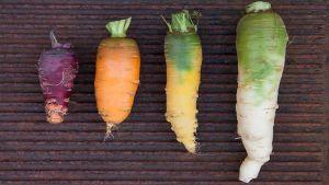 verdure antiche