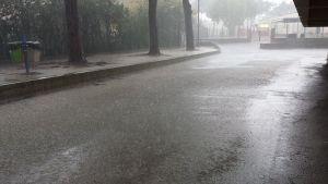 pioggia san vincenzo