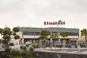 Etnatost