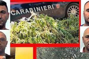 Belpasso, Carabinieri sequestrano 70 kg di marijuana e arrestano 4 persone: operazione lampo dopo controllo in c.da Pulici