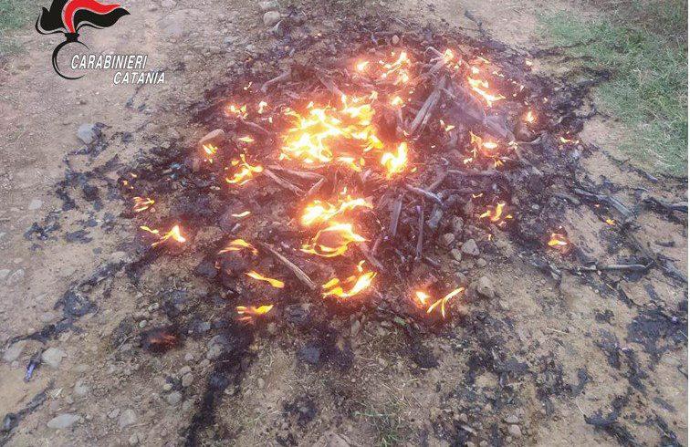 Maniace, si libera dei tubi di gomma bruciandoli: denunciata donna di 28 anni