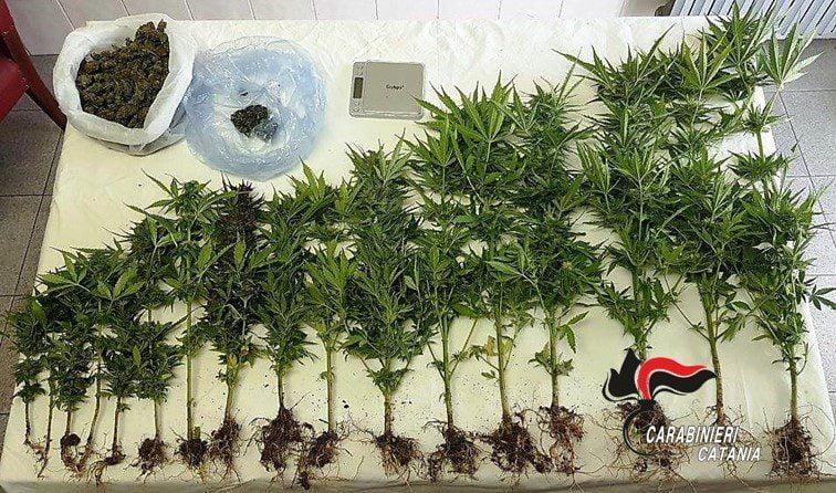 Maniace, la cassaforte in bagno per nascondere la droga: denunciato 39enne