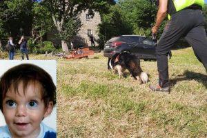 Firenze, ripartite le ricerche del bimbo scomparso: per trovare il piccolo Nicola cani molecolari e centinaia di volontari