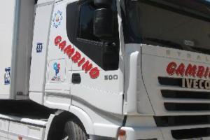 Palermo, il crac del gruppo Gambino trasporti: 5 arresti. Sequestrati oltre 4 mln