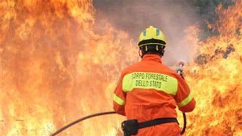 Incendi, in Sicilia stato di allerta generale: Regione revoca ferie a dirigenti e personale della Forestale