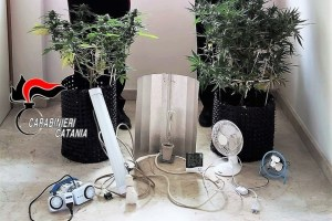 Acireale: lampade, ventilatori e igrometro per curare la cannabis: 31enne arrestato