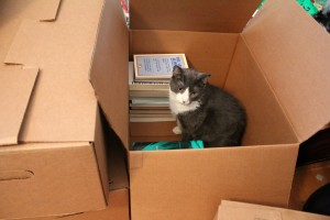 Packing Tips  How to Pack a Book Box  Corrigan Moving
