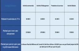 Plafonds des auto-entrepreneurs 2019 : chiffre d'affaires, TVA et prélèvement libératoire.