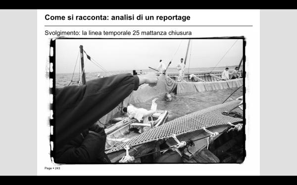 Mattanza, Copyright Vittore Buzzi