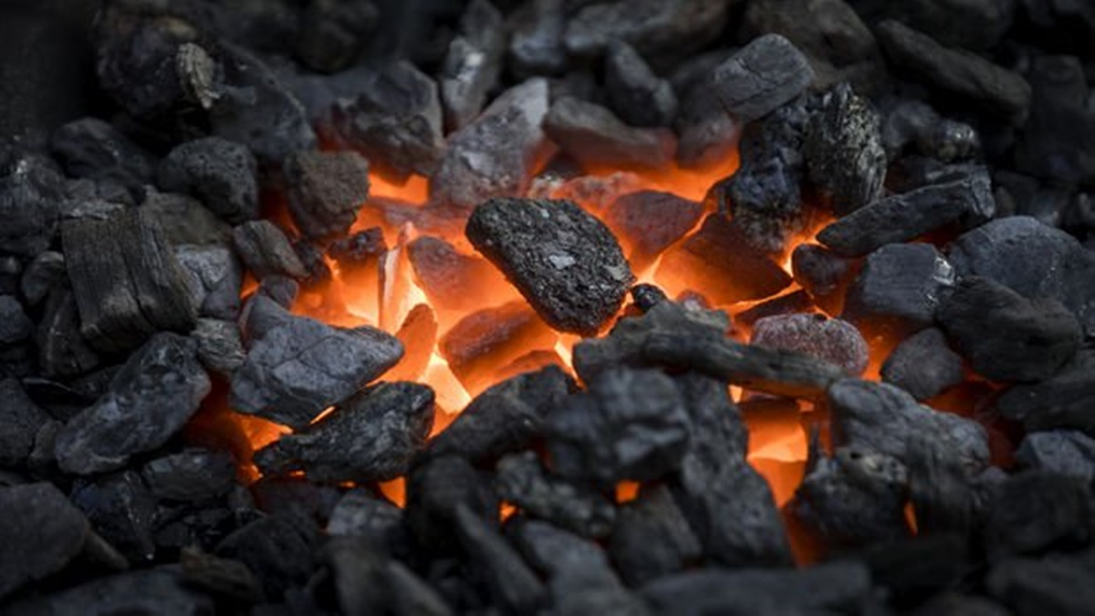 Kömür Dağıtımına Başlanıldı