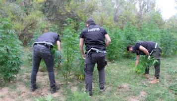 Uyuşturucu madde yapacaklardı!