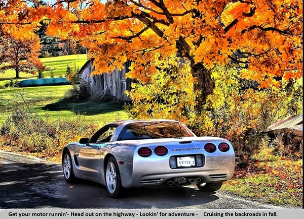 Corvette in the fall