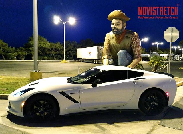 Corvette at roadside attraction