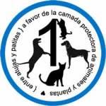 1ª campaña: La Camada, protectora de Guadalajara | Foto: http://entreagujasypatitas.blogspot.com