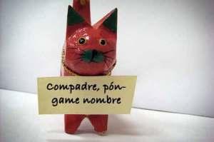 El origen de la palabra gato | Foto: notigatos.com
