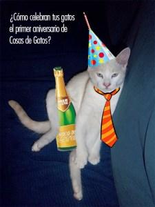 Participa en el concurso solidario de Cosas de Gatos en Facebook