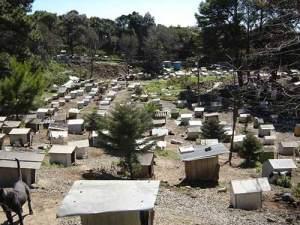 La favela ocupa 3 hectáreas y fue cedida por el Ayuntamiento | Foto: Asociación SOAMA