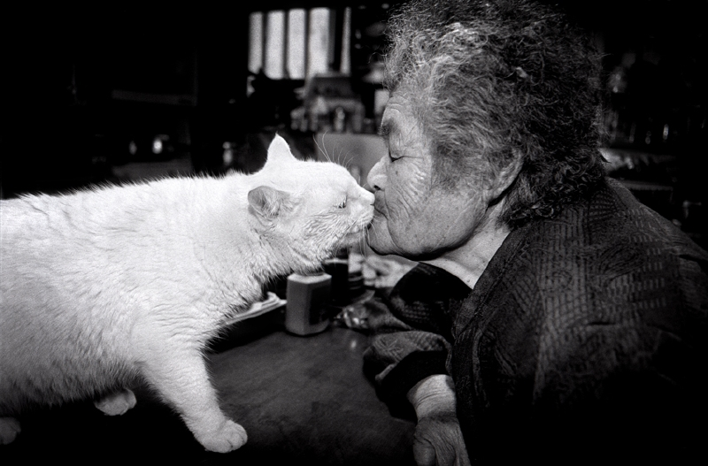 El gato y la anciana se quieren mucho | Copyright © Miyoko Ihara