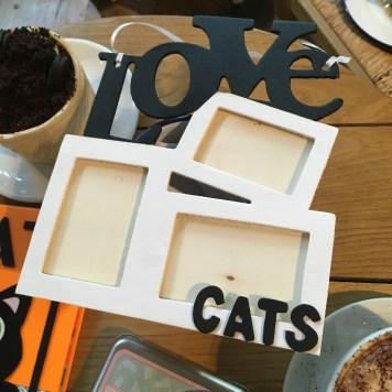 Marco con letras Sorteo Cosas de Gatos