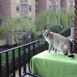 Se pueden hacer cerramientos con redes flexibles para gatos