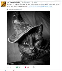 Ganadora del sorteo de Cosas de Gatos en <a href=