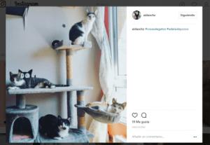 Ganadora del sorteo de Cosas de Gatos en Instagram del cómic de Adelaida&Coco