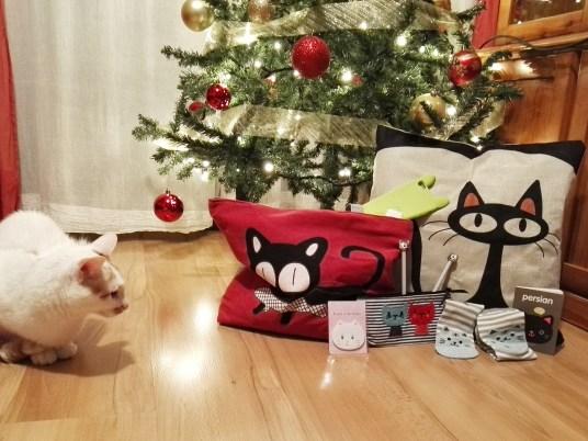 Fotos ganadora sorteo aniversario Cosas de Gatos