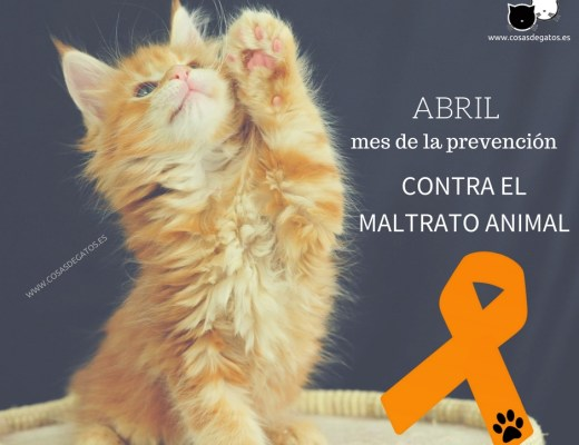 Cartel contra el maltrato animal abril