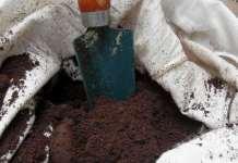 cafe usado en el huerto