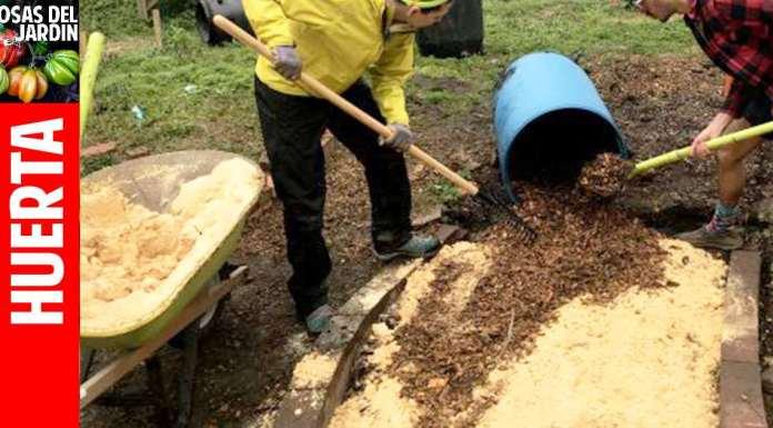 como usar aserrin en el huerto