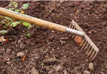 como mejorar la calidad del compost