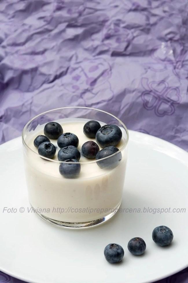mousse-al-cioccolato-bianco-e-mirtilli
