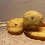 biscotti polentini