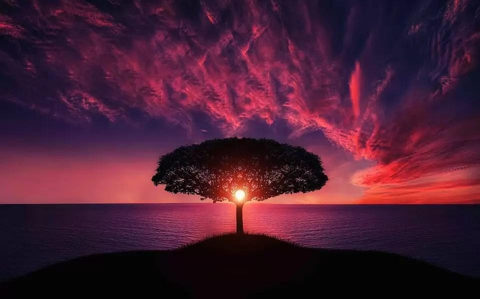Scienza: esoterismo o essoterismo?