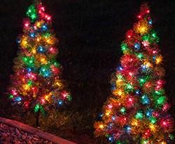 christmas-walkway-trees