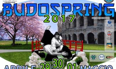 festival internazionale delle arti marziali
