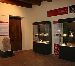 museo_brettii