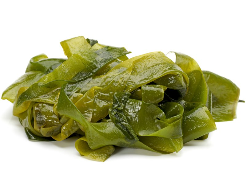 Kelp Seaweed – Superfood Focus