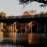 Roebuck Lake in Itta Bena MS