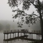 Mayes Lake at LeFleur's Bluff State Park, Jackson MS