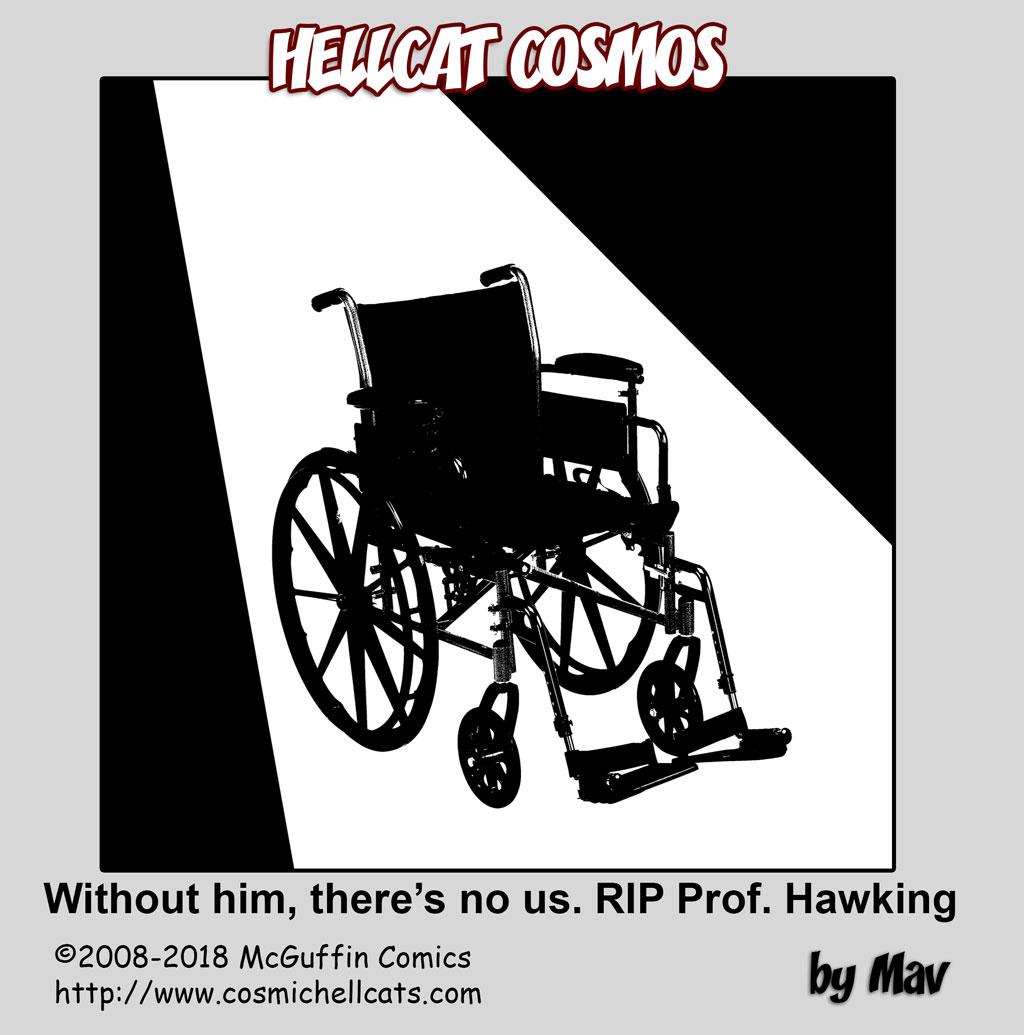 In Memoriam: Stephen Hawking