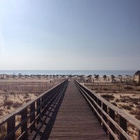 PhotoFriday :: Vacation Snaps