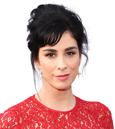 Picture of Sarah Silverman, a career woman