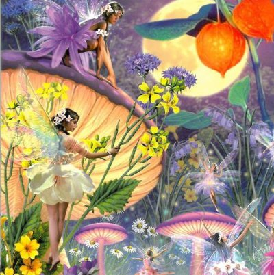 Faerie CD Greeting Card