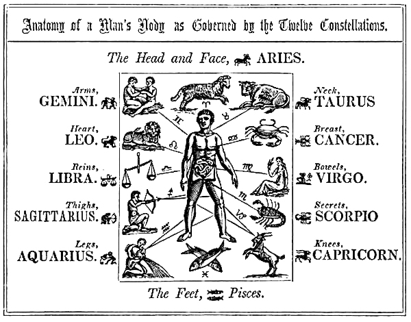 Zodiac Body Parts Ruled