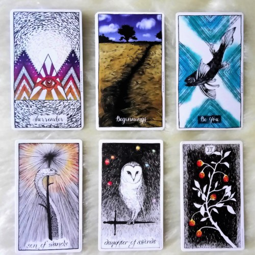 wild unknown tarot connected and free oracle